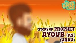 Urdu Islamic Cartoon For Kids   Prophet Ayoub (AS) Story    Quran Stories For Kids In Urdu