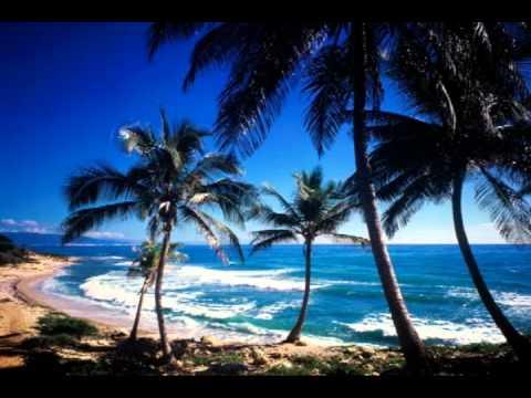 Life Investors 2012 Presidents Trip - Rock'n The Dominican