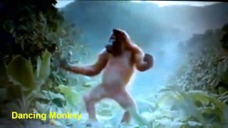 Dancing Monkey | Танцующая обезьяна