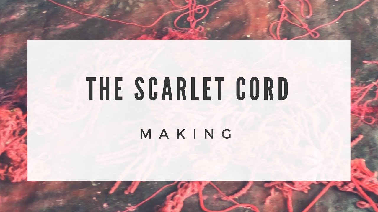 The Scarlet Cord - Healing for Sex Trafficked Children