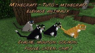 Minecraft - Tuto - minecraft elevage animaux (vache, mouton, cochon, poule, chien, chat) tuto