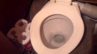 Toilet Flushing NZ Style