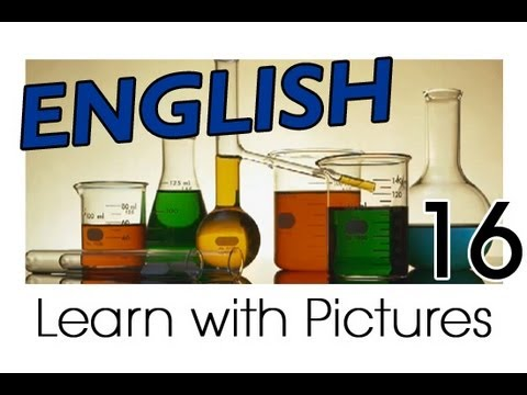 English subjects of the study