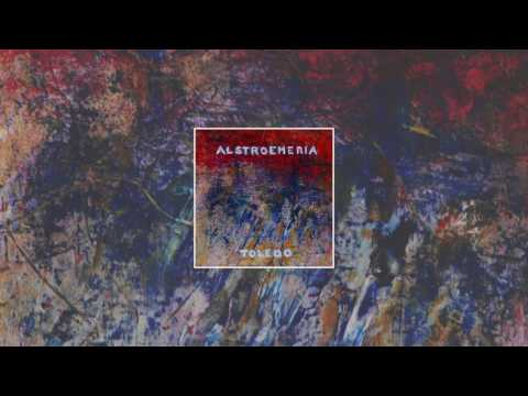 alstroemeria // TOLEDO