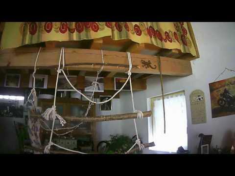 Training des petits Pyrrhura Molinae – 2ème extrait
