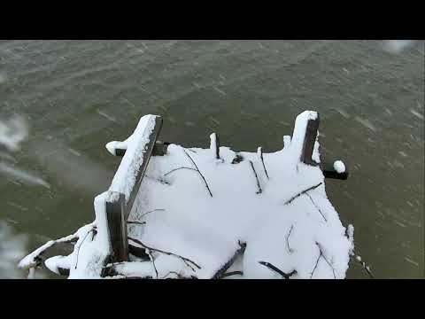 Osprey Nest - Chesapeake Conservancy Cam 03-21-2018 09:49:34 - 10:49:34