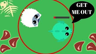 Mope.io Beta - New Immortal Yeti Hack !! New 1v1 Mode Funny Glitch // Funny Yeti Trolling
