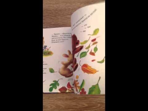 Большая книга стервы Полное пособие по стервологии