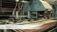WISA vanerin tuotantoprosessi