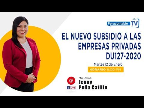 EL NUEVO SUBSIDIO A LAS EMPRESAS PRIVADAS DU127-2020