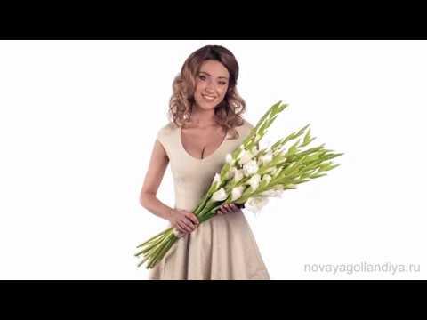 Свежая малиновая роза аква и сортовая гвоздика, под нежным воздушным кремом из. 6 550. Заказ и доставка цветов и букетов в нижнем новгороде.