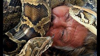 Топ-5 видов животных, которые убивают наибольшее количество людей