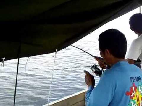 Memancing ikan kakap merah di laut muara badak   East ...Badak Laut