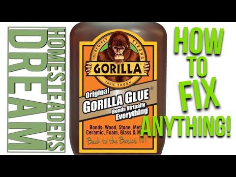Original gorilla glue review - YouTube