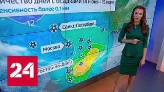 Из-за погоды на чемпионате мира запретят пускать фейерверки и жарить шашлыки - Россия 24