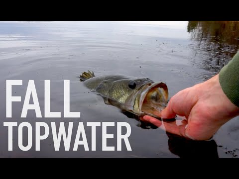 Late Fall Topwater & Jig Bass Fishing