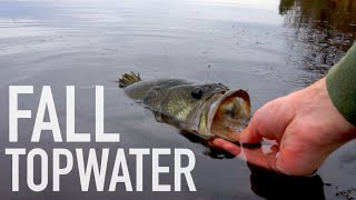 Late Fall Topwater & Jig Bass Fishing