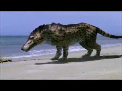Walking With Beasts - Andrewsarchus (All Scenes)