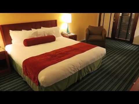 Room Tour- Hotel Zico Mountain View California