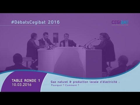 #DébatsCegibat 2016 - Autoproduction et autoconsommation : le modèle de demain ? [01]