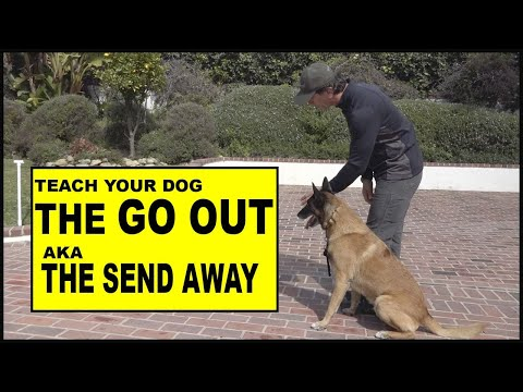 Teach Your DOG the Go OUT / Send Away - Dog Training Video