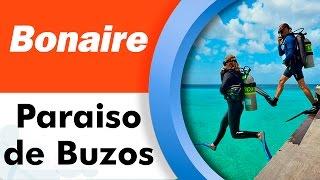 Bonaire, ¡el paraíso para bucear!