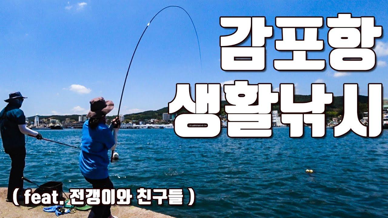 [다리tv] 감포항 전갱이!!! 생활낚시 입문자 추천!!! ☆ 모퉁이에서 ☆