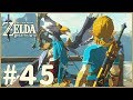Zelda: Breath Of The Wild - Ravali (45)