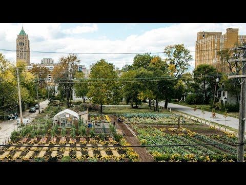 America's first sustainable urban agrihood | Curbed