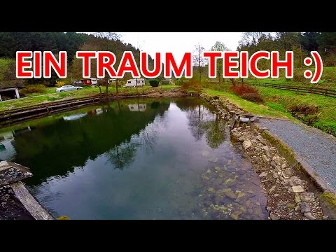 TRAUM TEICH | 30 BACHFORELLEN FÜR HARZI :)