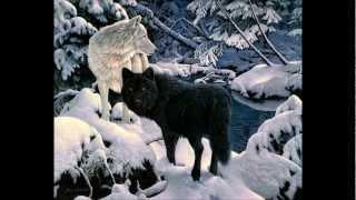 Реанимация-Волк