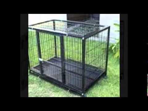 x large dog kennel