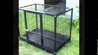 X Large Dog Kennel