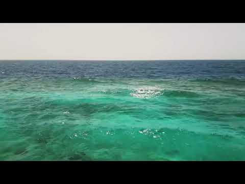 Carlos Santana - Oneness ( Relaxing Sea View and Music ) mp3