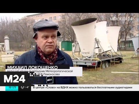 Видео: Московские парки ограничивают вход из-за ураганного ветра - Москва 24