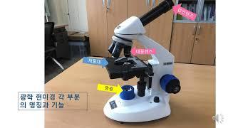 광학현미경의 구조와 사용법1