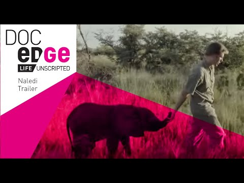Naledi: A Baby's Elephant's Tale Trailer