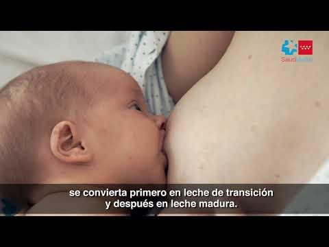 ¿Cómo funciona la lactancia materna?