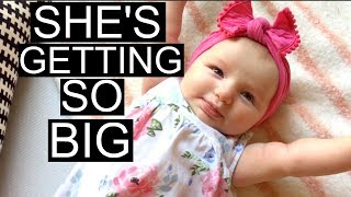 DAY IN THE LIFE WITH A NEWBORN & TODDLER VLOG   8.5.17   Tara Henderson