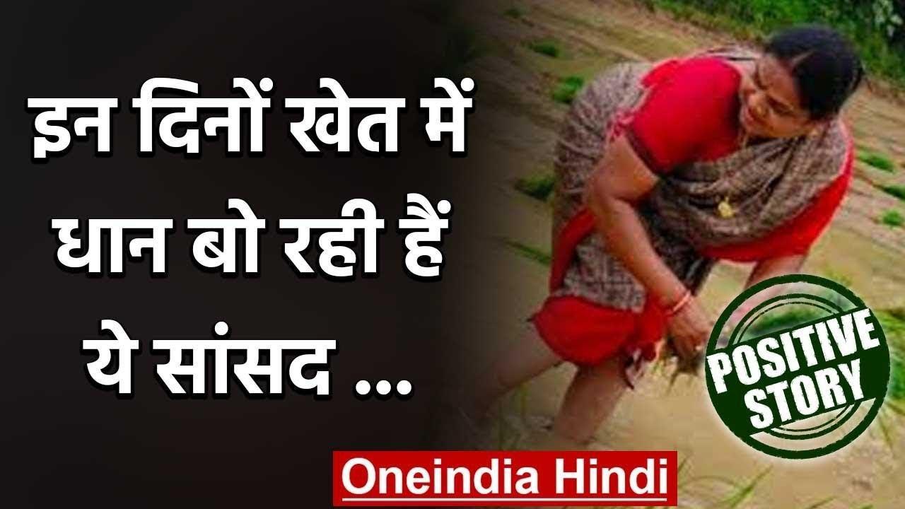 Phulo Devi Netam :  इन दिनों खेत में धान बो रही हैं कांग्रेस सांसद | वनइंडिया हिंदी