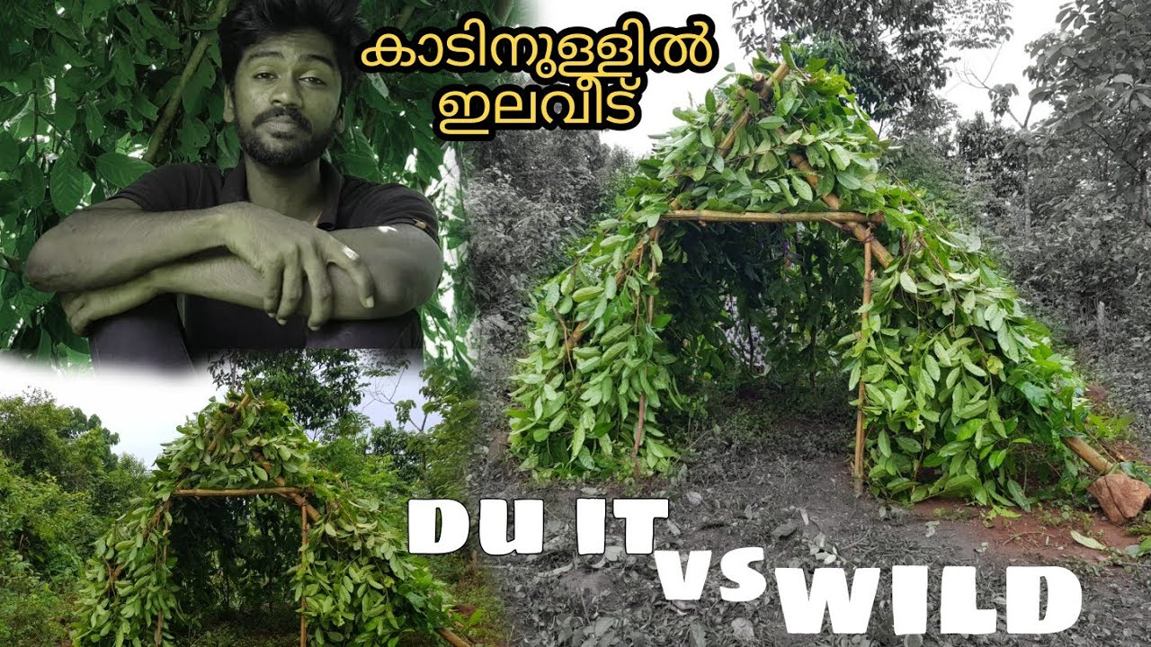 Wild shelter making in malayalam wild natural tent making leaf house making tree house