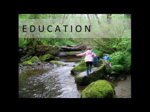 Rethinking the Value of Forests: From Timber to Water, Education and Health