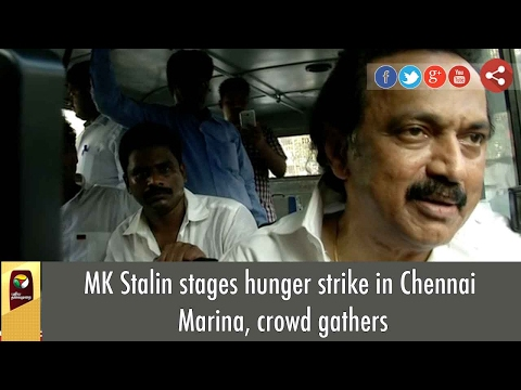 MK Stalin stages hunger strike in Chennai Marina, crowd gathers