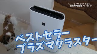 【ベストセラー】これから重宝するよ!シャープ加湿空気清浄機 プラズマクラスターKC-F50-W thumbnail