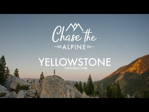 Yellowstone National Park, WY | Hiking up Bunsen Peak, plus Geysers, Hot Springs, and Bison!