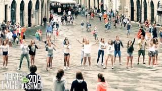 Flashmob La Vie Du Bon Côté