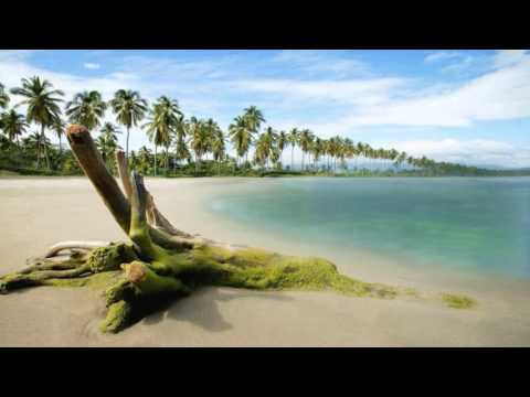 Nalin & Kane - Beachball (DJ Icey's Bass Mix)