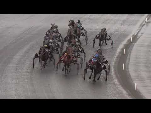 Prix d'Amérique Races