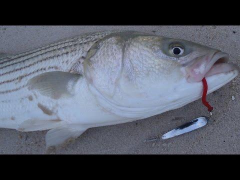Full download john skinner lures i fish with for John skinner fishing
