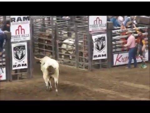 Rodeo At Lou. KY, 2015 NAILE